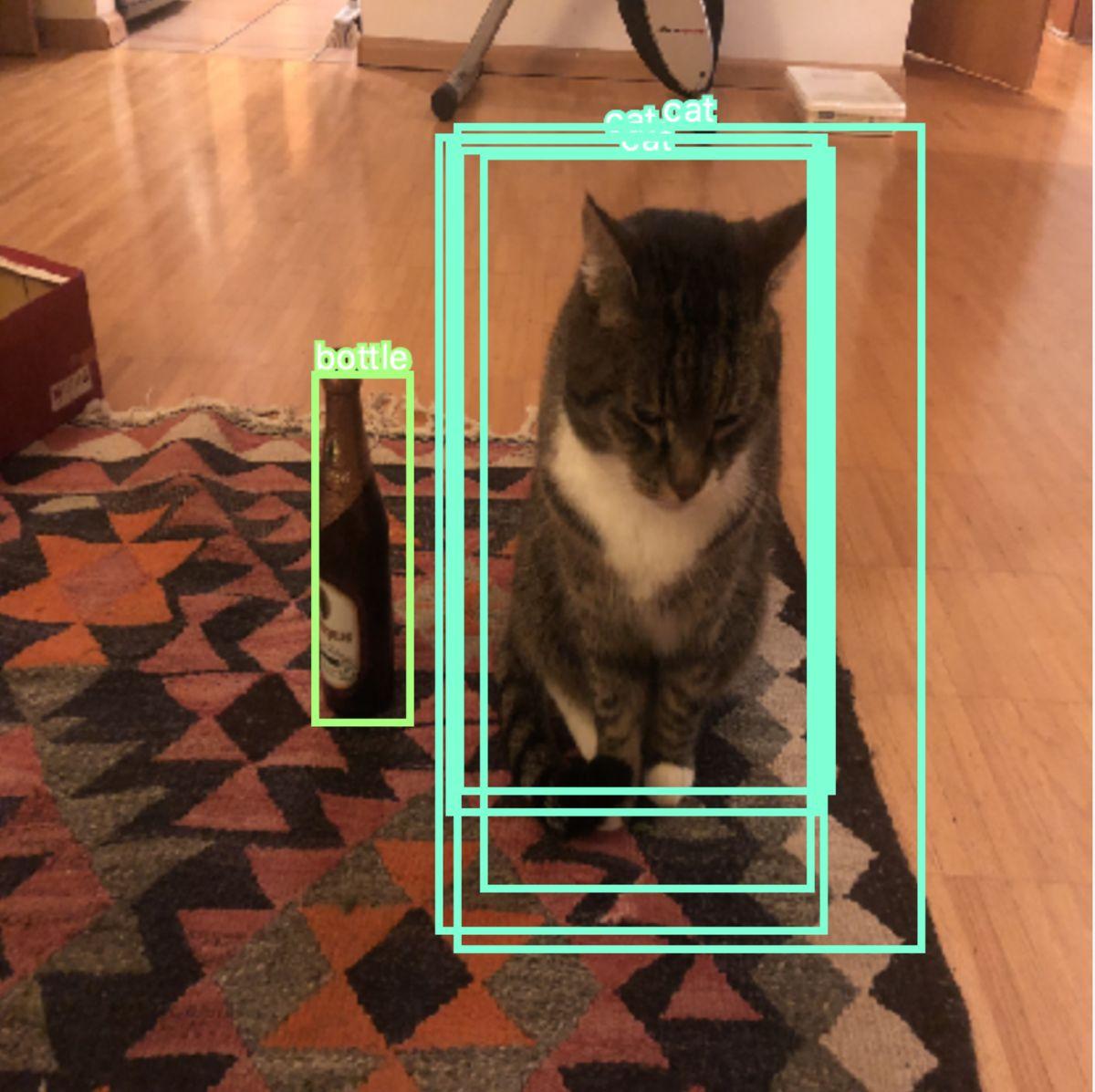 20. Wie man in Echtzeit mehrere Objekte mit Deep Learning und YOLO ...